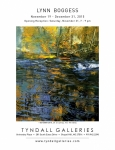 Tyndall Galleries